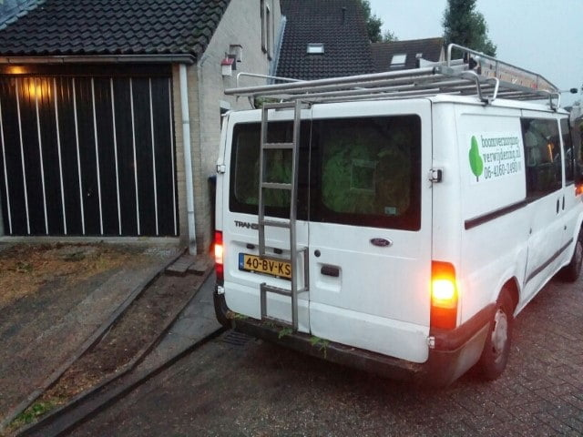 Felling and removing a tree in Almere