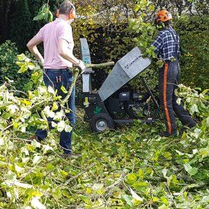 Bomen kappen. Helemaal laten vallen is het snelst!